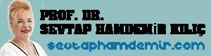 Prof. Dr. Sevtap Hamdemir Kılıç Tüp Bebek Uzmanı