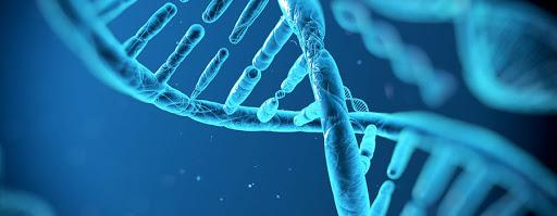 Tekrarlayan bebek kayıpları ve genetik faktörler ilişkisi